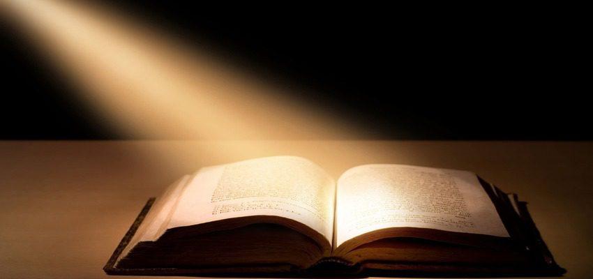Аргументы из литературы и жизни для сочинения 15.3 на тему: «Драгоценные книги» (ОГЭ по русскому языку)