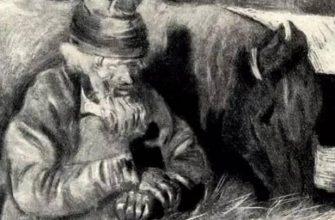Сочинение: Образ маленького человека в рассказе «Тоска» (А.П. Чехов)