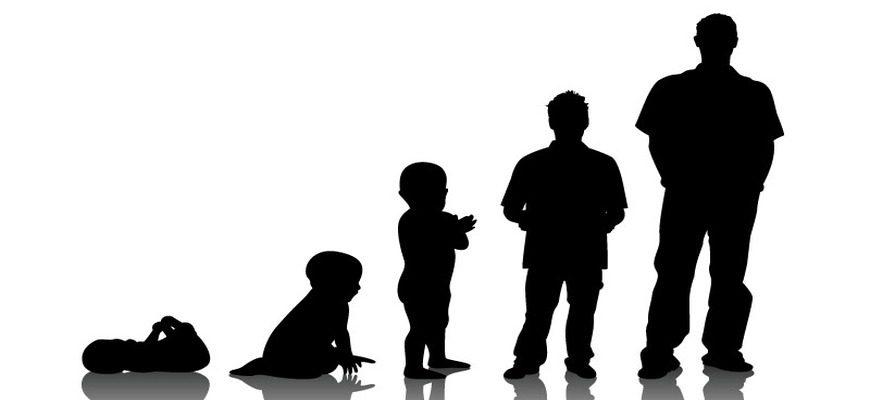 Аргументы из литературы и жизни для сочинения на тему: «В чём заключается взросление» (ЕГЭ по русскому языку)