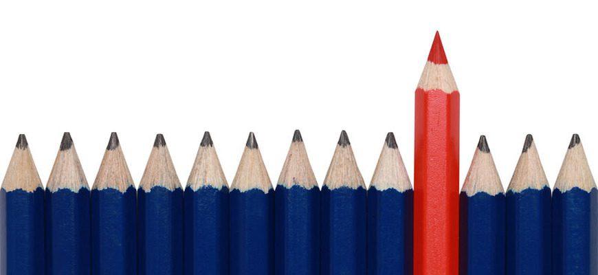 Аргументы из литературы и жизни для сочинения 15.3 на тему: «Что такое авторитет» (ОГЭ по русскому языку)