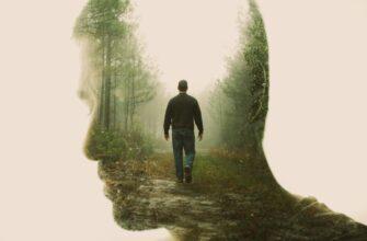 Сочинение: Почему люди уходят в себя?
