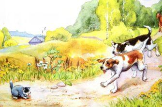 Краткое содержание рассказа «Котёнок» (Л.Н.Толстой) для читательского дневника