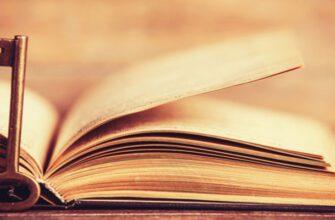 Аргументы из литературы и жизни для сочинения на тему: «В чём заключается мудрость?»