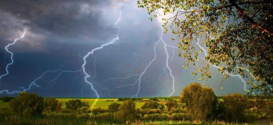 Анализ стихотворения «Весенняя гроза» (Ф. И. Тютчев)