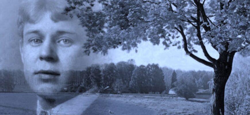 Анализ стихотворения «Заметался пожар голубой» (С. А. Есенин)