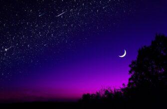 Анализ стихотворения «Какая ночь! Как воздух чист…» (А.А. Фет)